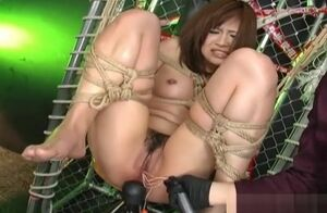 Sugary-sweet Asian Enslaved Hog tied..